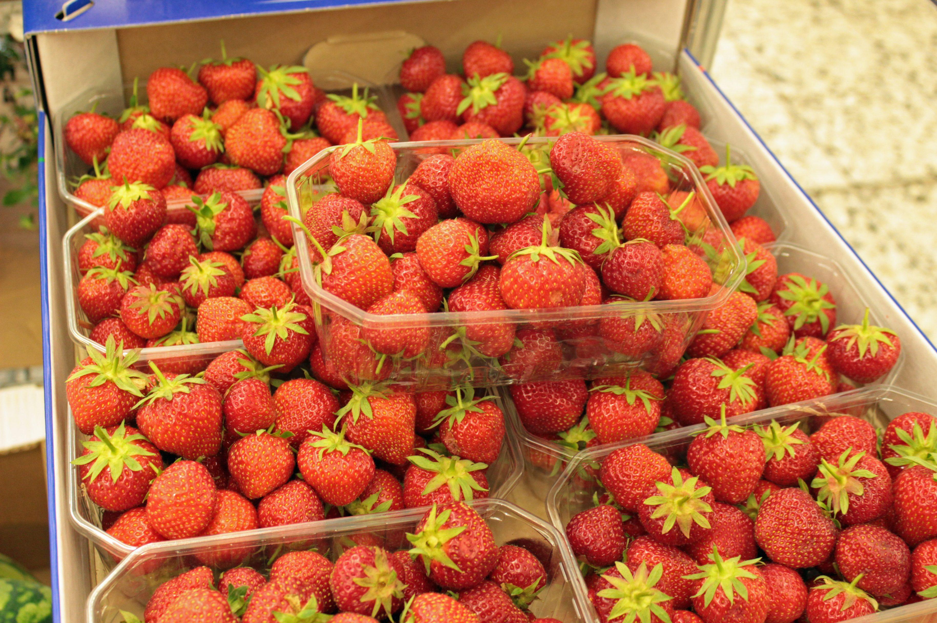 Frische Erdbeeren und Heidelbeeren im Landkreis unbelastet