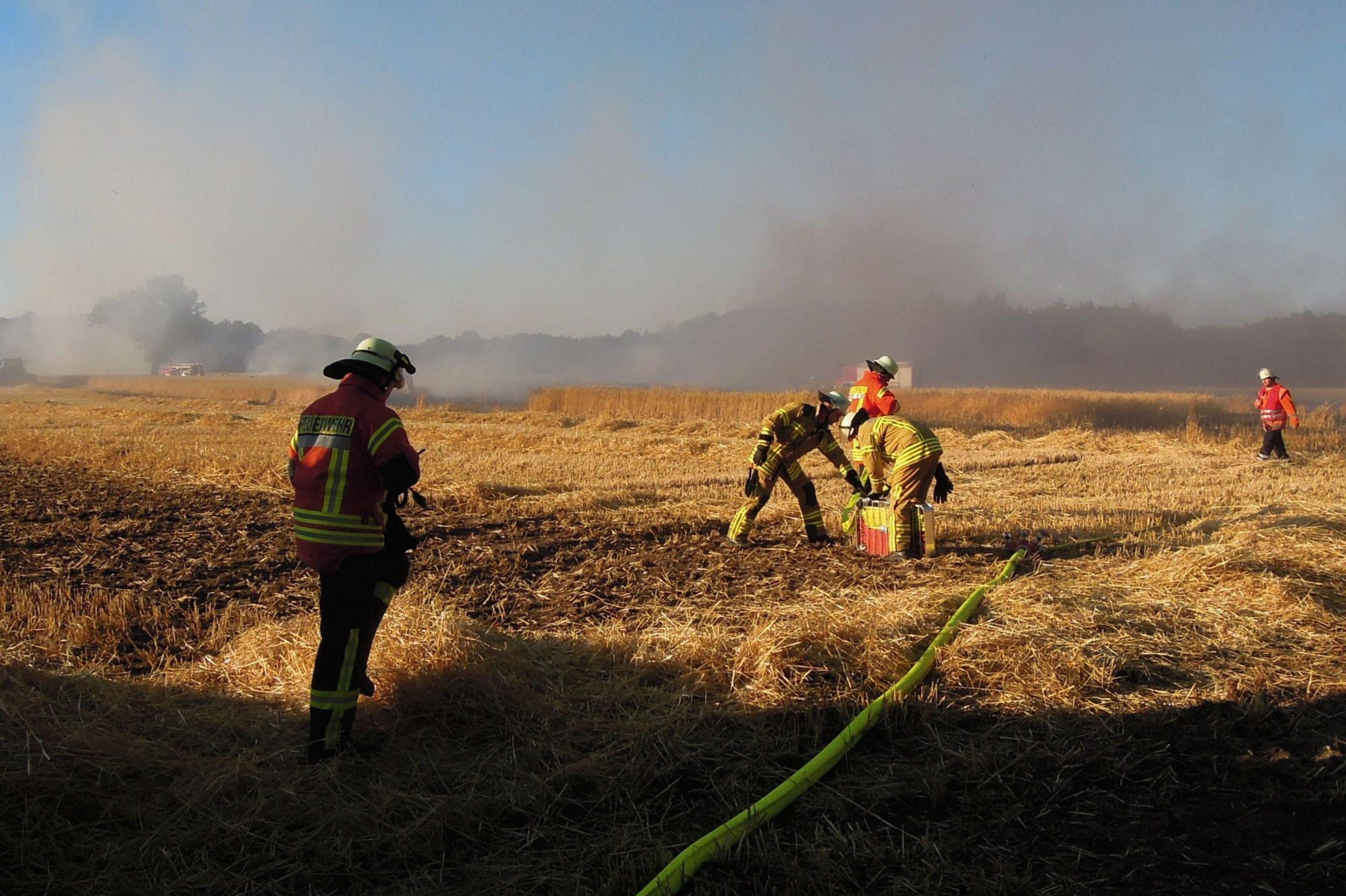 Hitze hält Feuerwehr weiter auf Trab