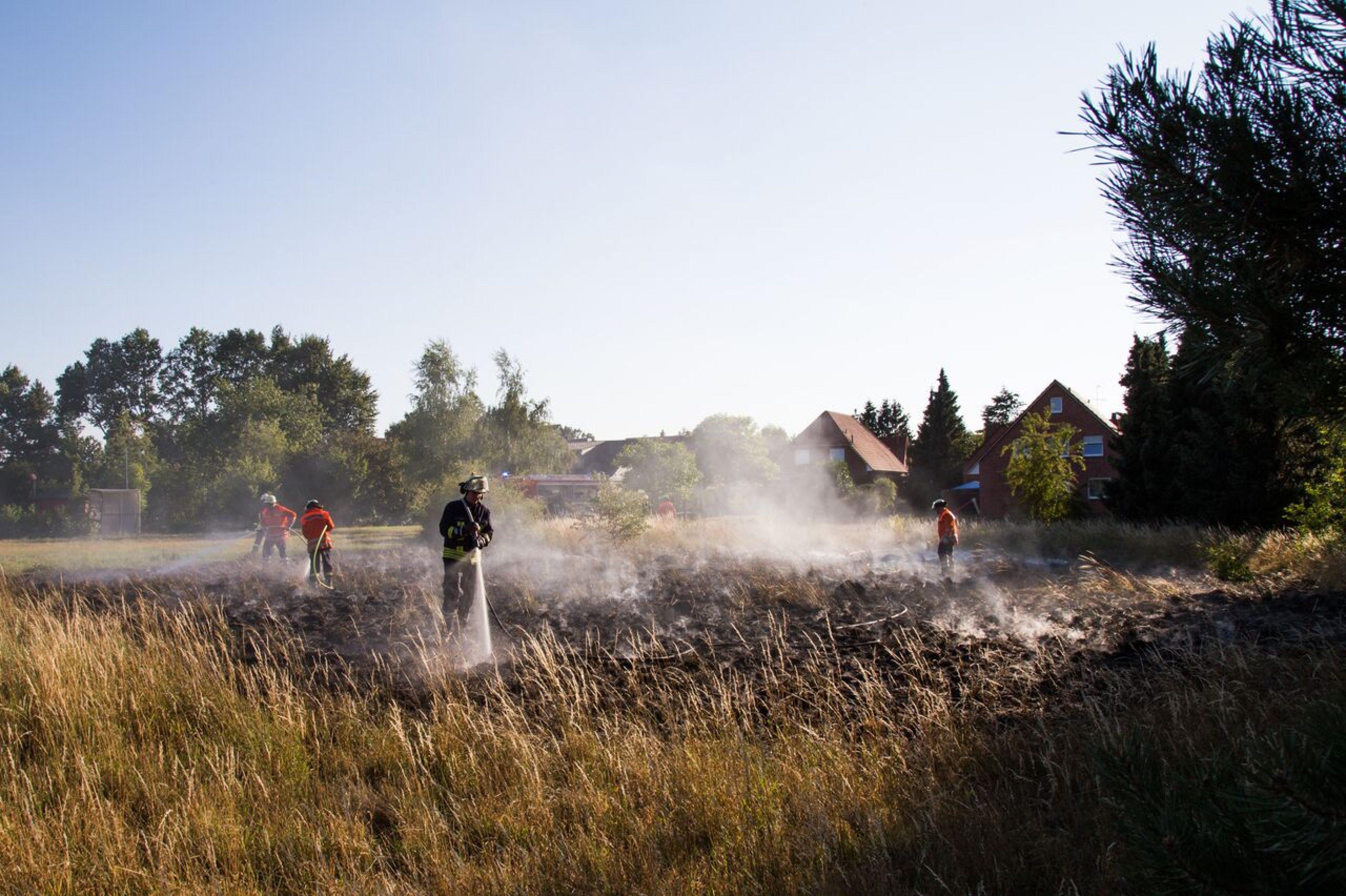 Brennende Wildwiese gelöscht
