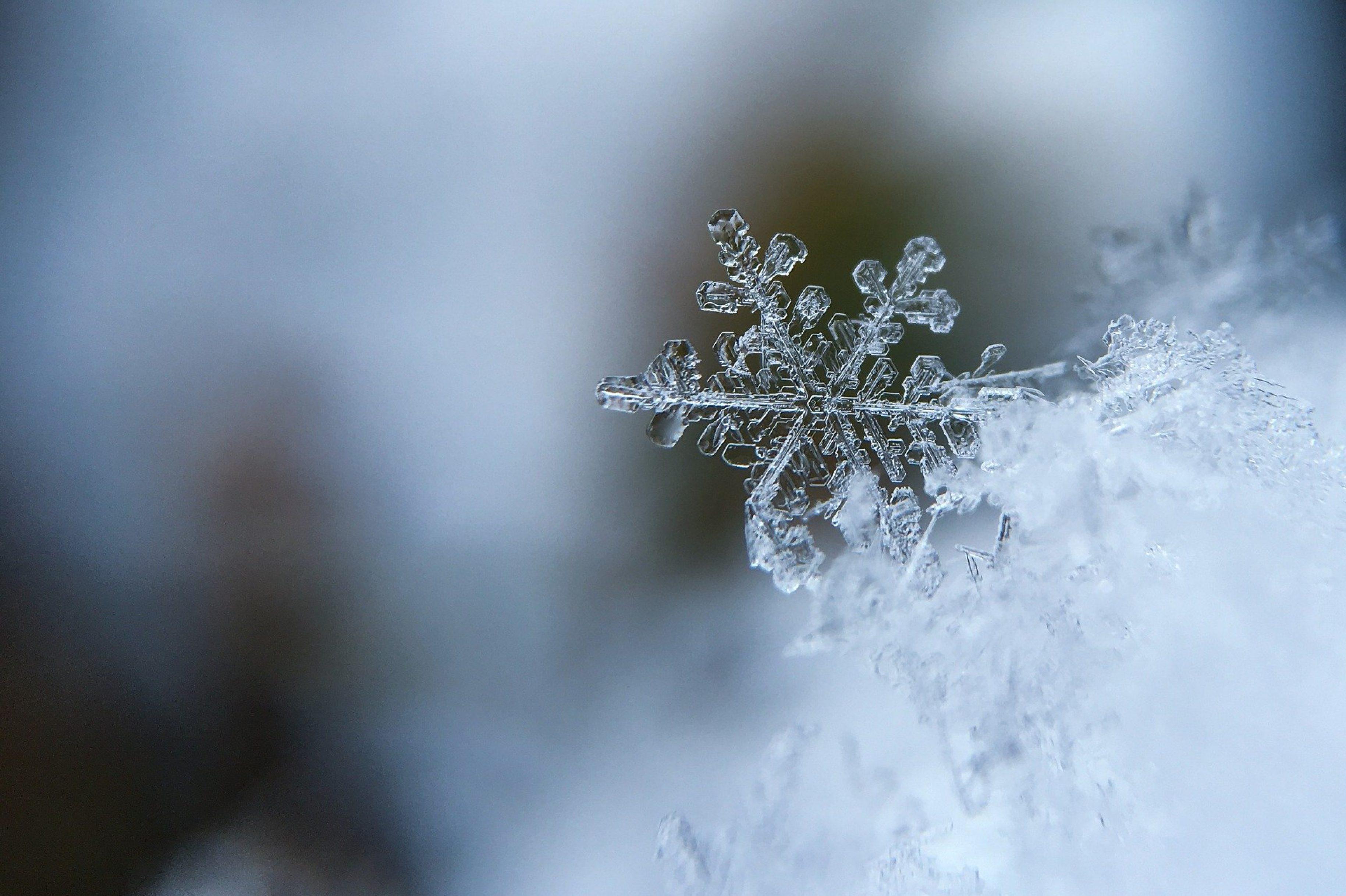 Der erste Schnee!